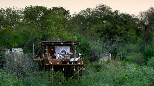 Kingston- tree house Lion Sands South Africa