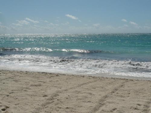 Mombasa Seascape
