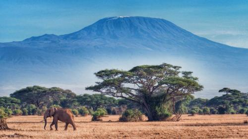 Mt. Kilimanjaro view from Amboseli National Park.