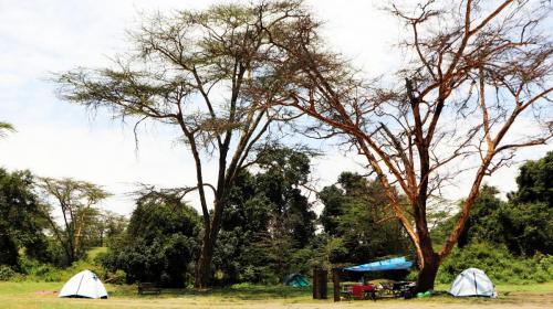 Weekend camping at Lake Nakuru
